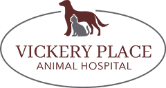 VPAH logo